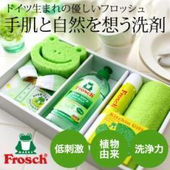 お中元 ギフト 洗剤 出産内祝い お返し ギフト 洗剤 フロッシュ キッチン洗剤