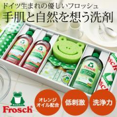お中元 ギフト 快気祝い 洗剤 内祝い ギフト フロッシュ キッチン洗剤