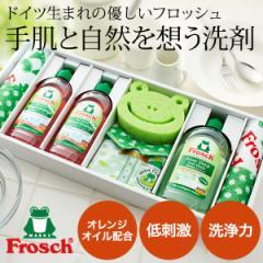 お中元 ギフト 洗剤 快気祝い 洗剤 内祝い ギフト フロッシュ キッチン洗剤