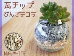瓦チップ びんご テコラ Mサイズ 白 600g 観葉植物 プランター カバー材 かわいい リサイクル