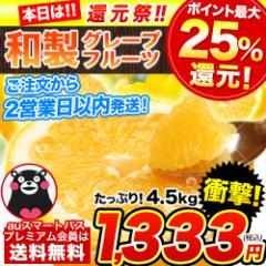 みかん ジュース 野菜ジュース にも 訳あり フルーツ 果物 晩柑 大容量4.5kg 熊本県産 和製グレープフルーツ 2営業日以内速攻出荷 河内晩