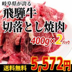 【肉のひぐち】☆送料無料☆(冷凍)飛騨牛切り落とし【焼肉】400g入×2パック わけあり/訳あり/やきにく/牛肉/和牛