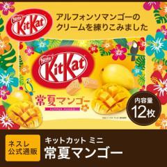 キットカット ミニ 常夏マンゴー 12枚【ネスレ公式通販】【KITKAT チョコレート】