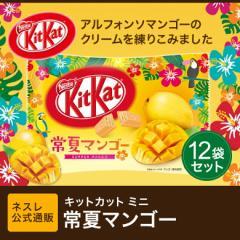 キットカット ミニ 常夏マンゴー 12枚×12袋セット【ネスレ公式通販】【KITKAT チョコレート】