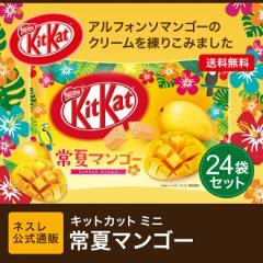 キットカット ミニ 常夏マンゴー 12枚×24袋セット【ネスレ公式通販・送料無料】【KITKAT チョコレート】