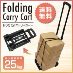 【送料無料】 キャリーカート 折りたたみ 台車 ハンディカート アウトドア 軽量 耐荷重25kg 3段階調節
