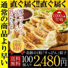 直ぐ届く ランキング1位 餃子 冷凍 ぎょうざ すっぴん餃子 100個 送料無料 訳あり グルメ 大阪