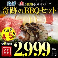焼肉 送料無料 焼肉セット BBQ バーベキュー 焼き肉 海鮮 4-5人前セット ハラミ 訳あり でない  業務用