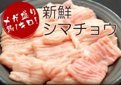 ホルモン 約1キロ 200g×5袋 もつ鍋 シマチョウ ショウチョウ 焼肉 バーベキュー