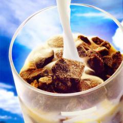 氷カフェ アイスライン キャラメル かき氷 20袋 冷凍 業務用 夏 ドリンク