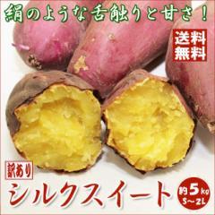【送料無料】[訳あり] シルクスイート [5kg] 絹のような舌触りと甘さが特徴のさつまいも   [ご家庭用 さつま芋 サツマ芋[大阪常温-f]