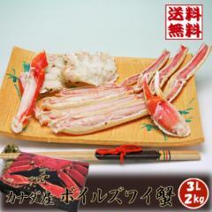 【送料無料】極上品質!カナダ産 ボイルズワイ蟹 3L 2kg [お歳暮ギフト][贈り物に パーティに Xmasプレゼント ご贈答用][いなべ冷凍-f]