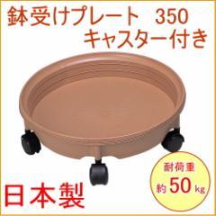 鉢受けプレートキャスター付き 350 日本製 園芸 ガーデニング ガーデン 鉢 鉢置き 植木鉢 フラワー