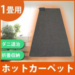 ホットカーペット 1畳 電気カーペット 90×180cm TEKNOS (テクノス) 本体 TWA-1000B 電気暖房 温度調節機能(強弱切替)付き