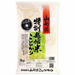 新米 特別栽培米 コシヒカリ 5kg 送料無料 山形県 置賜 令和3年産 (2021年 白米 5キロ)
