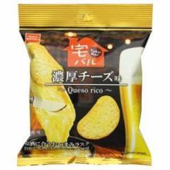 おやつカンパニー 宅バル 濃厚チーズ味 28g×12入(4月上旬頃入荷予定)