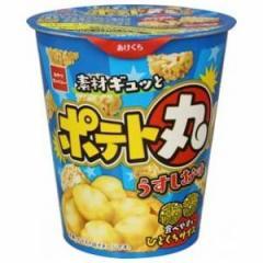 おやつカンパニー ポテト丸 うすしお味 55g×12入(4月上旬頃入荷予定)