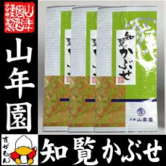 日本茶 煎茶 茶葉 知覧かぶせ 100g×3袋セット 送料無料 緑茶 知覧茶 ギフト 男性 女性 送料無料 お茶 父の日ギフト お中元 2019 プレゼ