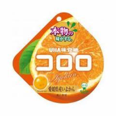 UHA味覚糖 コロロ いよかん 40g×6入