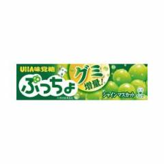 UHA味覚糖 ぷっちょ シャインマスカットスティック 10粒×10入