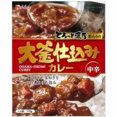 ハウス食品 大釜仕込カレー(中辛) 170g×10入