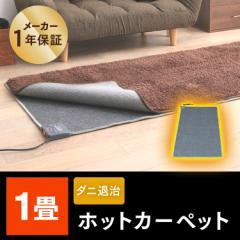 ホットカーペット 電気ホットカーペット ホットマット 電気カーペット 1畳用 本体 あったか TEKNOS 送料無料 暖房器具 暖房 ダニ退治 足