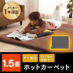 ホットカーペット 電気カーペット 1.5畳用 キッチン デスク 電気 小さい ダニ退治 本体  TEKNOS 送料無料
