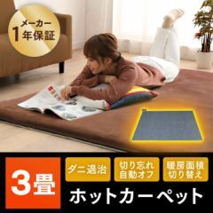 ホットカーペット 電気カーペット 3畳用 足元 マット カーペット 暖房 あったか 電気 安い 3畳 おすすめ 本体  TEKNOS 送料無料