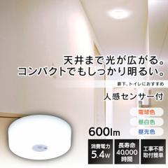 シーリングライト 照明 LED ライト 小型 アイリスオーヤマ LEDシーリングライト 小型シーリングライト 600lm SCL6DMS-MCHL SCL6NMS-MCHL