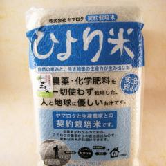 お中元 ギフト 契約栽培米 ひより米 ササニシキ 真空パック5kg (宮城県登米郡板倉産)