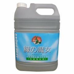 緑の魔女 洗濯用合成洗剤 業務用 5L