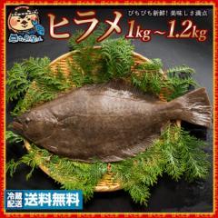 真鯛 タイ 養殖 (生) 1尾 約1.5kg 冷蔵 [送料無料 鮮魚 たい タイ 神経抜き 白身 魚 刺身 結納・お祝いにも欠かせない お食い初め ] グル
