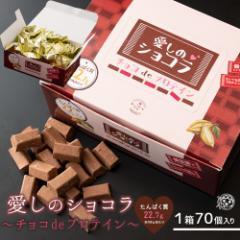 チョコレート 送料無料 愛しのショコラ チョコdeプロテイン チョコレート チョコ プロテイン配合 [ わけあり スイーツ タブレット チョコ
