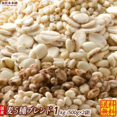 \週末特価/雑穀 麦 国産 麦5種ブレンド(丸麦/押麦/はだか麦/もち麦/はと麦) 1kg(500g×2袋) 送料無料 ダイエット食品 置き換えダイエ