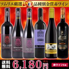 ソムリエ厳選 品種別金賞赤ワイン6本セット(750ml×6本)【送料無料】