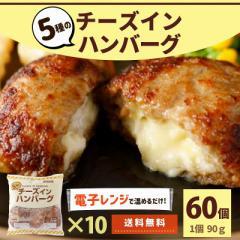 チーズインハンバーグ 10P (1P 6個入) 60個 送料無料 業務用 大容量 冷凍 冷凍食品 レンジ ハンバーグ チーズイン チーズ 5種 お買い得