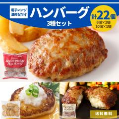 3種 ハンバーグ セット 22個入り 2kg 電子レンジ 温めるだけ 冷凍 送料無料 チーズイン 豆腐 ギフト 食品 大容量 ポイント 国内製造 業務