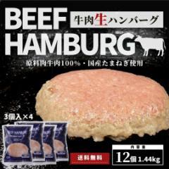 生ハンバーグ 牛肉 100% 12個 (3個入×4袋) 冷凍 1個 120g 計1.44kg 送料無料 国内製造 ハンバーグ 牛肉ハンバーグ 冷凍食品 冷凍総菜