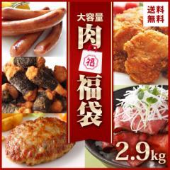 業務用 肉 福袋 食品 5種 約2.9kg 送料無料 復袋 食品 コロナ 応援 支援 冷凍食品 冷凍総菜 大容量 ローストビーフ ハンバーグ フライド