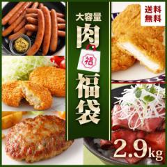 肉 福袋 食品 5種 約2.9kg 送料無料 業務用 復袋 食品 コロナ 応援 支援 冷凍食品 大容量 ローストビーフ ハンバーグ 骨なし フライドチ