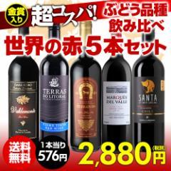 ワインセット 赤5本 世界のぶどう品種飲み比べ 超コスパ赤ワインセット 12弾 【送料無料】[ワインセット][長S]