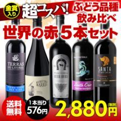 ワインセット 赤5本 世界のぶどう品種飲み比べ 超コスパ赤ワインセット 9弾 【送料無料】[ワインセット][長S]