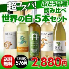 ワインセット 白5本 世界のぶどう品種飲み比べ 超コスパ白ワインセット 10弾 【送料無料】[ワインセット][長S]