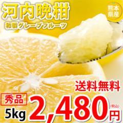 河内晩柑 みかん 和製グレープフルーツ ギフト 秀品 5kg M〜2L 送料無料 熊本県産 文旦 ジューシーオレンジ 美生柑