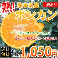 ポンカン 訳あり 送料無料 1.5kg S〜2L 熊本県産 2セットで1セットおまけ 3セットで3セットおまけ デコポン みかん 蜜柑