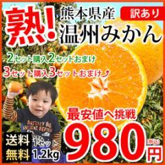 みかん 送料無料 訳あり 温州みかん 1.2kg 2S〜3L 熊本県産 2セットで2セット 3セットで3セットおまけ 熊本みかん 蜜柑 ミカン