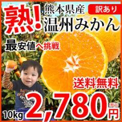 みかん 送料無料 訳あり 温州みかん 10kg 2S〜3L 熊本県産 熊本みかん 蜜柑 ミカン