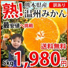 みかん 送料無料 訳あり 温州みかん 5kg 2S〜3L 熊本県産 熊本みかん 蜜柑 ミカン