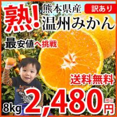 みかん 送料無料 訳あり 温州みかん 8kg 2S〜3L 熊本県産 熊本みかん 蜜柑 ミカン