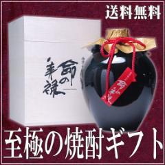 父の日 ギフト 焼酎 プレゼント 高級 芋焼酎 命の美禄 壺 豪華桐箱付き900ml 25° 包装不可 焼酎 甕入り 送料無料